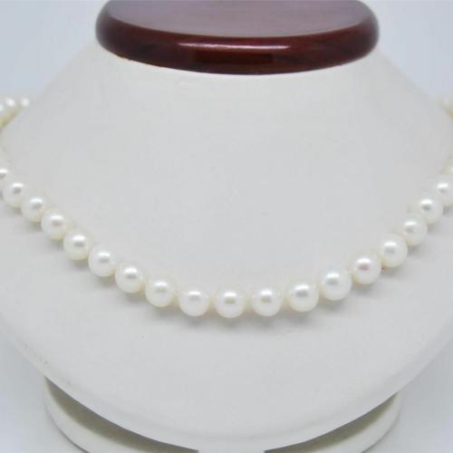Choker 8mm White Necklace 18''